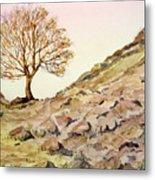 The Lone Sentry-sycamore Gap. Metal Print