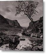 The Lone Tree Of Glencoe Metal Print by Ben Spencer