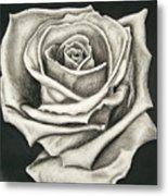 The Lonely Rose Metal Print