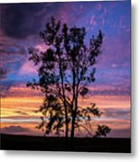 The Lonely Tree Metal Print