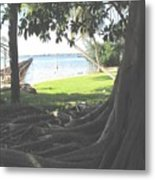 The Long Dock Metal Print
