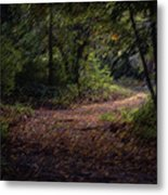 The Long Road Metal Print