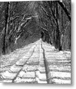 The Long Winter Walk Metal Print