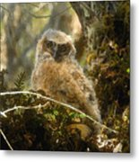 The Look Of Innocence Metal Print