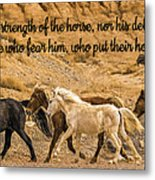 The Lord's Delight Metal Print
