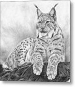 The Lynx 2017 Version Metal Print