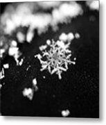 The Magic In A Snowflake Metal Print