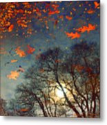 The Magic Puddle Metal Print