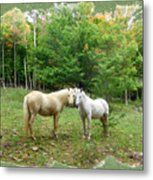 The Mares Watch Metal Print