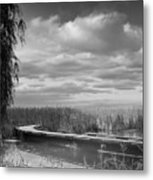 The Marsh-in Black And White Metal Print