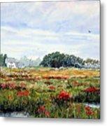 The Marsh In Bloom Metal Print