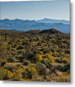 The Mcdowell Mountains Metal Print
