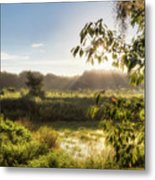 The Mists Of The Morning Metal Print