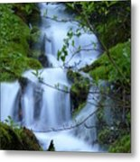 The Misty Brook Metal Print
