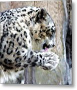 The Morning Bath Metal Print