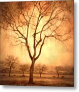 The Mother Tree Metal Print