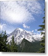The Mountain  Mt Rainier  Washington Metal Print