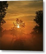The Mourning Mist Metal Print