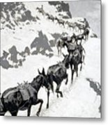The Mule Pack Metal Print