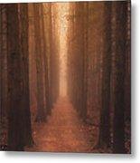 The Narrow Path Metal Print