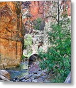 The Narrows Of The Virgin River  Metal Print