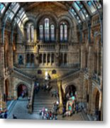 The Natural History Museum London Uk Metal Print by Donald Davis