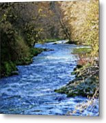 The Nestucca River Metal Print by Margaret Hood