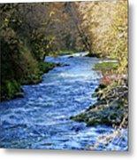 The Nestucca River Metal Print