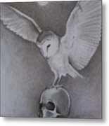 The Night Flier Metal Print