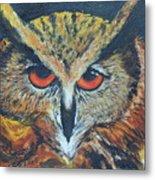 The Night Owl  Metal Print