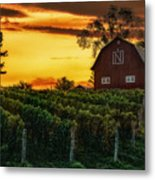 The North Country Metal Print