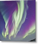 The Northern Lights In Churchill Metal Print