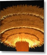 The Nuclear Age Metal Print