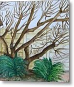 The Old Apricot Tree Metal Print