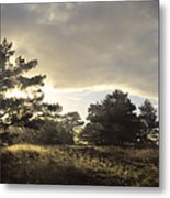 The Old Heath Metal Print