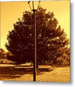 The Old Lantern In The Park Metal Print