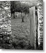 The Old Orchard Metal Print