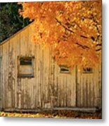 The Old Shack Metal Print
