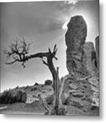 The Old Tree Metal Print by Andreas Freund