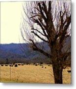 The Old Tree In Winter Metal Print