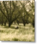 The Orchard Metal Print