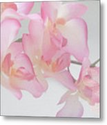 The Orchid Metal Print