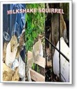 The Original Official Milkshake Squirrel Metal Print