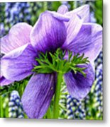 The Other Side Of Anemone   Metal Print