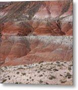 The Painted Desert  8020 Metal Print