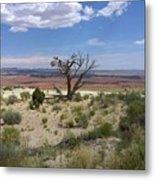The Painted Desert Of Utah 2 Metal Print
