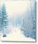 The Pale Kiss Of Winter Metal Print