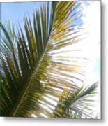 The Palms Metal Print