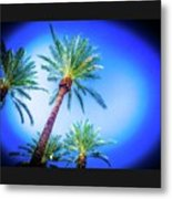 The Palms Of Scottsdale  Metal Print