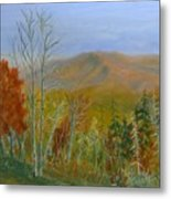The Parkway View Metal Print